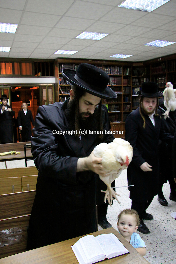 Israel, Bnei Brak, Kapparot ceremony at the Premishlan congregation
