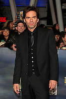 LOS ANGELES, CA - NOVEMBER 12: Billy Burke at the premiere of 'The Twilight Saga: Breaking Dawn - Part 2' at Nokia Theater L.A. Live on November 12, 2012 in Los Angeles, California.  Credit: MediaPunch Inc. /NortePhoto