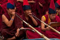 Buddhist Lama Monk from the Himalayan belt