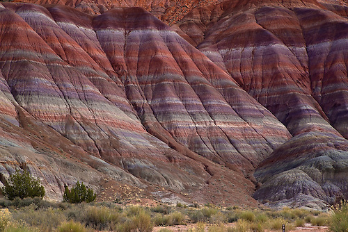 Bright colors are revealed in the clay beds that are exposed through erosion in Southern Utah