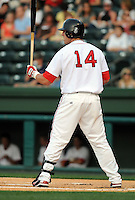 May 22, 2008: Catcher Ty Weeden (14) of the Greenville Drive, Class A affiliate of the Boston Red Sox, during a game against the Charleston RiverDogs at the West End in Greenville, S.C. Photo by:  Tom Priddy/Four Seam Images