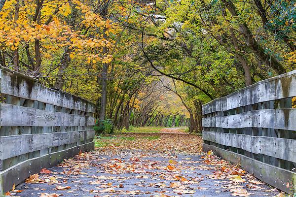 A bike path bridge on the Little Miami Scenic River Trail richly adorned in the colors of autumn, Southwestern Ohio, USA