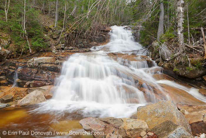 Sparkling Cascade in Crawford Notch of the New Hampshire White Mountains during the spring months. This cascade is located on a tributary of Avalanche Brook above Ripley Falls.