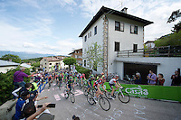 1st peloton up the very steep Fai Della Paganella climb (15%)<br /> <br /> stage 16: Bressanone/Brixen - Andalo 132km<br /> 99th Giro d'Italia 2016
