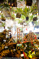 Pacific Orchid Expo 2012