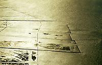 Deutschland, Nordsee, Wattenmeer, Wellen, Gold, Hochwasserschutz, Wasser, Buhne, Nationalpark Schleswig Holsteinisches Wattenmeer