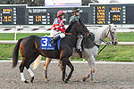 02-16-19 Rachel Alexandra Stakes