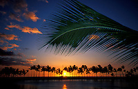Sunset on the Big Island of Hawaii with plam - Anahoomalu Bay