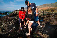 The area exposed at low tide and underwater at high tide is the intertidal zone . Tidepools allow people a glimpse of ocean plants and animals, California, Pacific Ocean