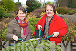 Margaret Pigott and Yvonne Quill who are planning another busy year with Killarney Tidy Towns