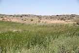 Balchaschsee_Wüste und Bewässerung