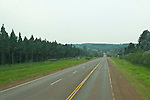Tree plantations along highway in Misiones, Argentina.