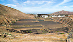 Volcano crater and black volcanic soil farmland, near Tinajo, Lanzarote, Canary Islands, Spain