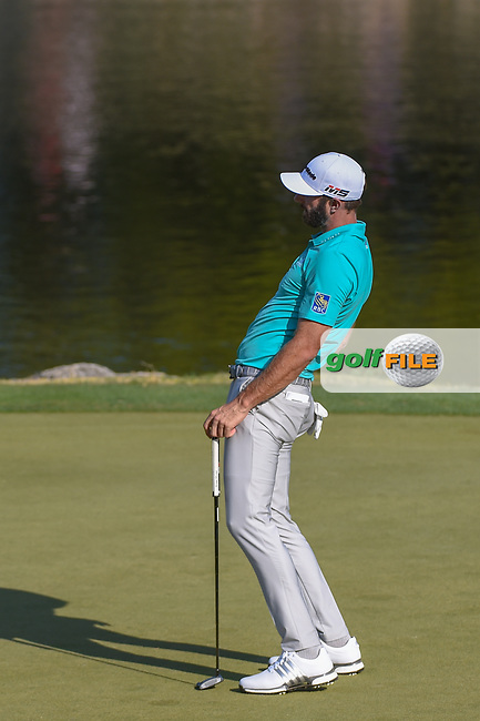 Dustin Johnson (USA) reacts to barely missing his birdie putt on 11 during day 1 of the WGC Dell Match Play, at the Austin Country Club, Austin, Texas, USA. 3/27/2019.<br /> Picture: Golffile   Ken Murray<br /> <br /> <br /> All photo usage must carry mandatory copyright credit (© Golffile   Ken Murray)