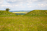 A gap in the Wansdyke Saxon defensive embankment on chalk downs, All Cannings down, Wiltshire, England, UK