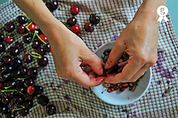 Woman's (43) hands removing the pit from cherries before cooking a Cherry jam (Licence this image exclusively with Getty: http://www.gettyimages.com/detail/82406653 )