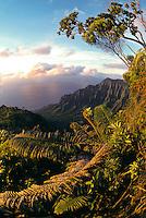 Kalalau valley overlook, Kokee state park, Kauai, Hawaii
