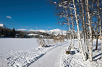 Austria, Tyrol, international Wintersport Resort Seefeld: Winter walk along frozen Wild Lake, Wetterstein mountains at background