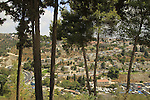 Israel, Upper Galilee, the Citadel Garden in Safed