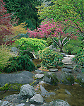 Jackson County, OR<br /> Spring blossoming shrubs and trees in the Japanese Garden of Lithia park in Ashland