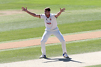 Matt Quinn of Essex appeals for a wicket during Essex CCC vs Nottinghamshire CCC, Specsavers County Championship Division 1 Cricket at The Cloudfm County Ground on 22nd June 2018