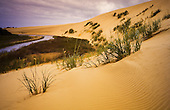 Sand dunes boarder Te Paki stream as it runs out to Ninety Mile Beach, Far North. Northland, New Zealand.