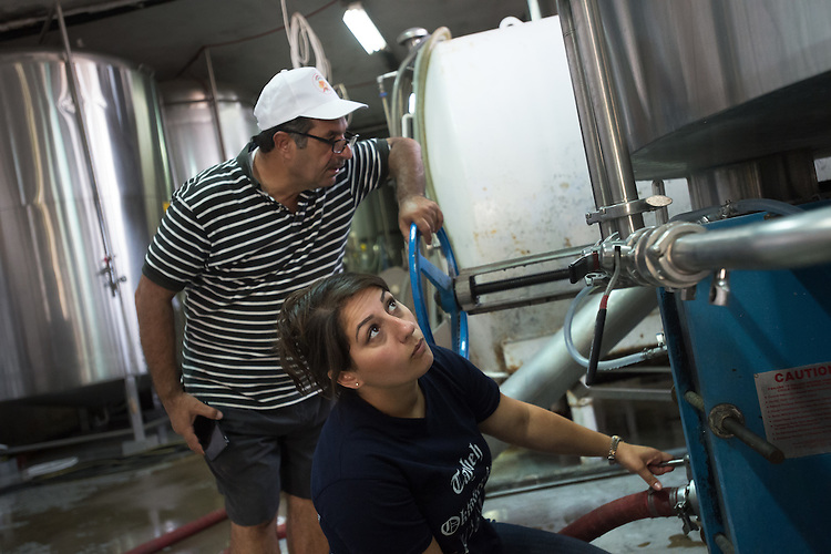PALESTINE Taybeh, West Bank<br /> <br /> Taybeh Brewery Company:<br /> <br /> Madees Khoury, general manager of the brewery, with her father who founded the brewery.