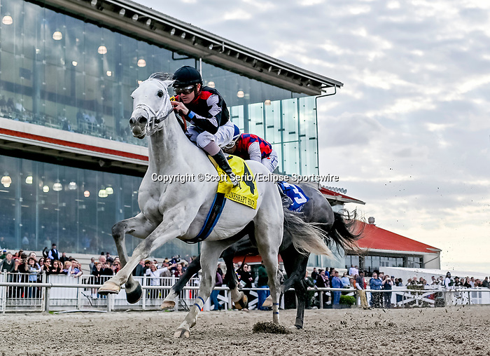 February 15, 2020: #4 Silver Dust and jockey Brian Hernandez win the Grade 3 Mineshaft Stakes over #3 Gun It and jockey Ricardo Santana Jr. during Risen Star Stakes Day at Fair Grounds Race Course in New Orleans, Louisiana. Scott Serio/Eclipse Sportswire/CSM