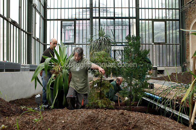 New Caledonia Glasshouse (formerly The Mexican Hothouse), 1830s, Charles Rohault de Fleury, Jardin des Plantes, Museum National d'Histoire Naturelle, Paris, France.  Low angle view of gardeners replanting the glasshouse. They have filled the new beds with earth and are now putting in the plants. Through the windows the Plant History Glasshouse (formerly Australian Glasshouse), 1830s, Rohault de Fleury, is visible. The New Caledonia Glasshouse, or Hothouse, was the first French glass and iron building.