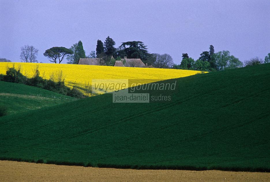 Europe/France/Aquitaine/47/Lot-et-Garonne/Env de Marmande: paysage agricole
