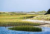 Woman and pet dog on a beach run, truro, Cape Cod, Massachusetts, USA