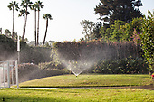 Lawns being watered by sprinklers during severe drought in Summer of 2014. Cheviot Hills, Los Angeles, California, USA