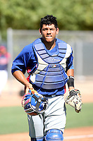 Jorge Alfaro - Texas Rangers - 2010 Instructional League.Photo by:  Bill Mitchell/Four Seam Images..