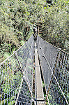 Suspension bridge at Montezuma Falls near Rosebery, Tasmania's highest waterfall.