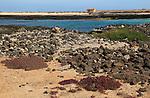 Coastal landscape near village of Majanicho on the north coast, Fuerteventura, Canary Islands, Spain