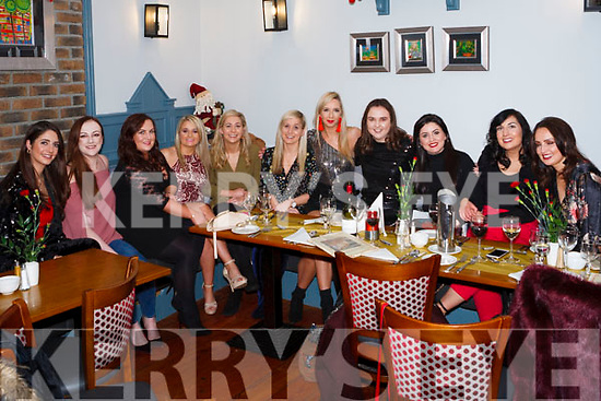 Julette O&rsquo; Sullivan from Abbeyfeale celebrated the last Birthday in her twenties with friends last Friday night in Leens Hotel Abbeyfeale.<br /> L-R Teresa Murphy, Seana Bonner, Sinead Galvin, Ciara Collins, Katie Daly, Clara Daly, Julette O&rsquo; Sullivan ( Birthday Girl), Therese Prendiville, sarah Sheehan, Noreen Galvin, Jennifer Cummins.