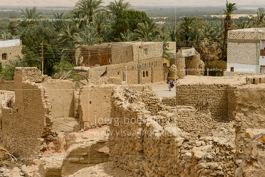 EGYPT, oasis El-Wahat el-Bahariya, Bawiti, old clay buildings and date palms / AEGYPTEN, Oase Bahariyya, Bawiti, alte Lehmhaeuser und Dattelpalme