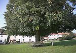 Westleton village green, Suffolk, England