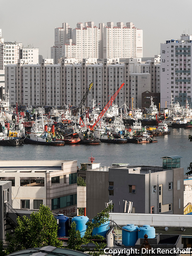 Fischereihafen in Busan, Gyeongsangnam-do, S&uuml;dkorea, Asien<br /> fishing harbor  in  Busan,  province Gyeongsangnam-do, South Korea, Asia
