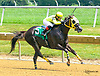 Gold Value winning at Delaware Park on 7/20/17