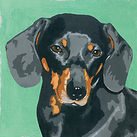 Painting of Dachshund dog