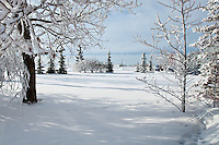 Fine Art Landscape photograph of a frosty, cold, winter morning in Calgary.