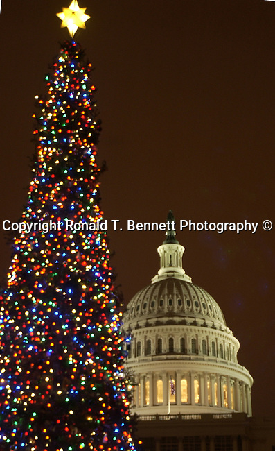 Christmas tree lights with United States Capitol in background Washington D.C., Washington DC at Christmas, Washington, D.C. fine art photography by Ron Bennett ©. Copyright, Fine Art Photography by Ron Bennett, Fine Art, Fine Art photo, Art Photography,