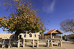 Israel, Upper Galilee, Nabi Sabalan in the Druze village Hurfeish