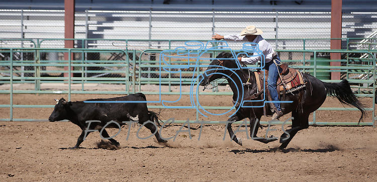 Danny Nalder competes in the double mugging event at the Minden Ranch Rodeo on Sunday, July 24, 2011, in Gardnerville, Nev. .Photo by Cathleen Allison