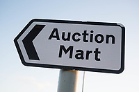 Auction Mart sign<br /> &copy;Tim Scrivener Photographer 07850 303986<br /> ....Covering Agriculture In The UK....