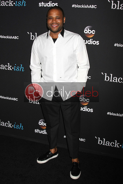 Anthony Anderson<br />