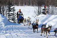 Jeremiah Klejka on the road heads towards the finish of the Jr. Iditarod   Willow, Alaska