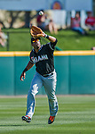 7 March 2016: Miami Marlins outfielder Xavier Scruggs pulls in a shallow fly ball during a Spring Training pre-season game against the Washington Nationals at Space Coast Stadium in Viera, Florida. The Nationals defeated the Marlins 7-4 in Grapefruit League play. Mandatory Credit: Ed Wolfstein Photo *** RAW (NEF) Image File Available ***