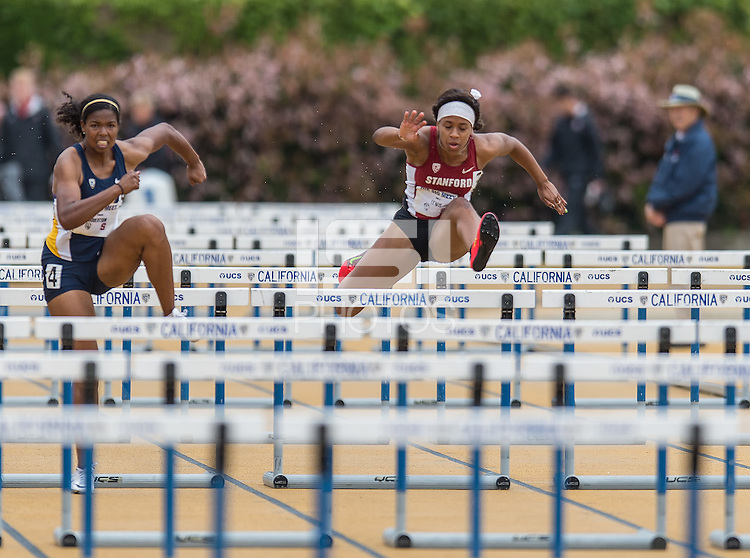 BERKELEY, CA -April 9, 2016: The Stanford Cardinal vs the Cal Bears for the Big Meet at the University of California. Women's score: Stanford 114, Cal 48. Men's score: Stanford 86, Cal 77.